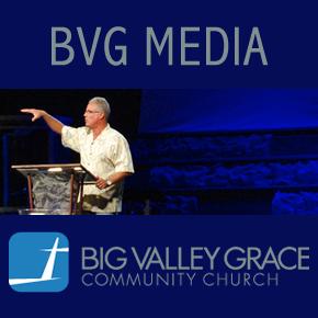 profile-bvg